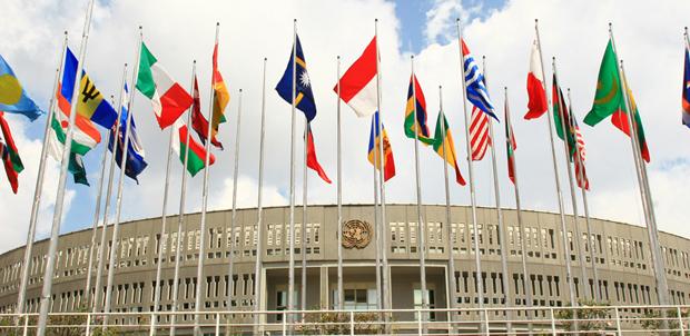 UNCC_flags