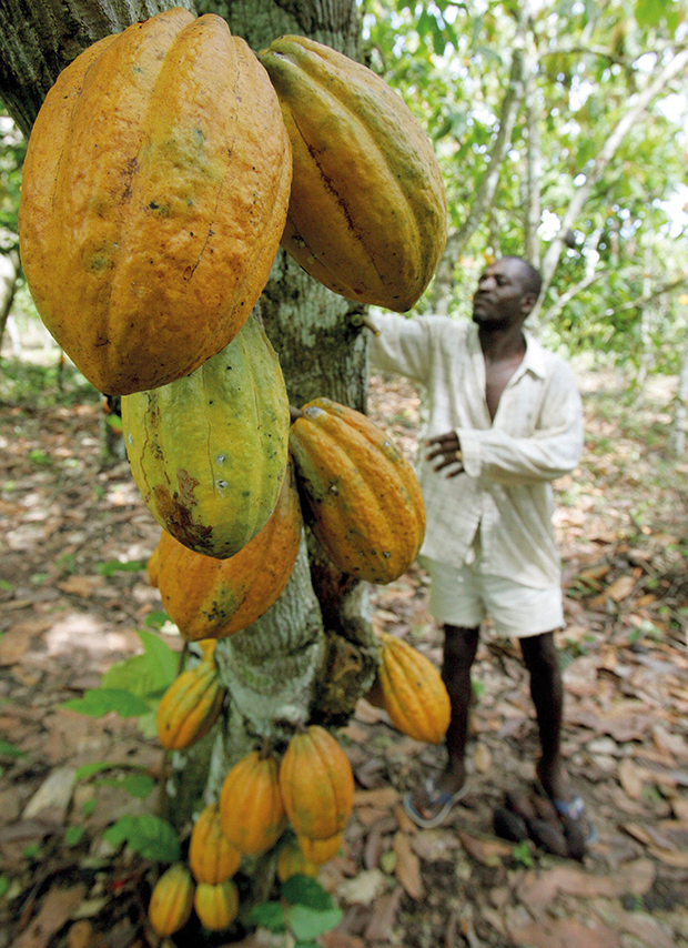 TO GO W/ AFP STORY IN FRENCH BY David YOUANT
